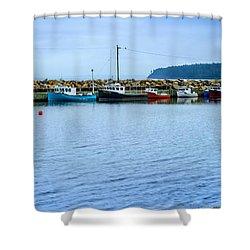 Feltzen South  Shower Curtain by Ken Morris
