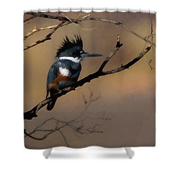 Shower Curtain featuring the digital art Female Belted Kingfisher by Ernie Echols