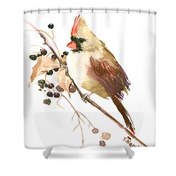 Female Cardinal Bird Shower Curtain