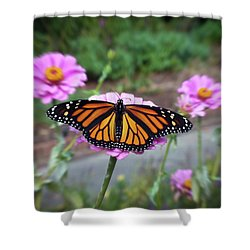 Female Monarch  Shower Curtain