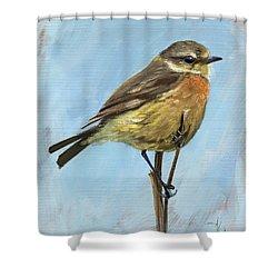 Female Stonechat Shower Curtain