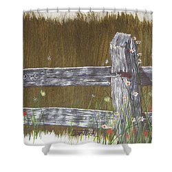 Fence D And S Shower Curtain