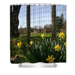 Shower Curtain featuring the photograph Fence With A View by Marie Neder