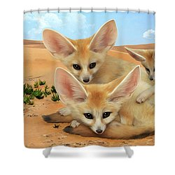Fennec Foxes Shower Curtain by Thanh Thuy Nguyen