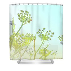 Shower Curtain featuring the photograph Fennel As High As An Elephant's Eye by Cindy Garber Iverson