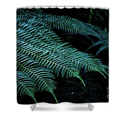 Patterns Of Nature 6 Shower Curtain