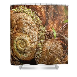 Fern Headdress Shower Curtain