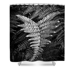 Fern In Black And White Shower Curtain