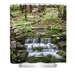 Fern Spring 5 Shower Curtain