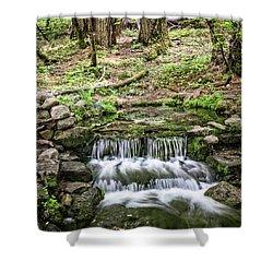 Fern Spring 5 Shower Curtain by Ryan Weddle