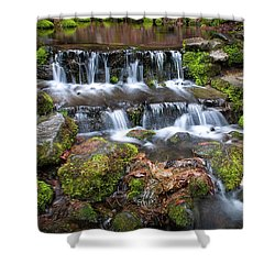 Fern Springs Shower Curtain