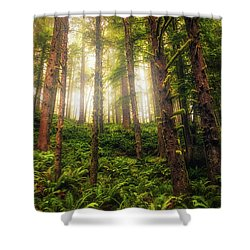 Shower Curtain featuring the photograph Ferngully by Rick Furmanek
