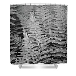 Ferns Shower Curtain