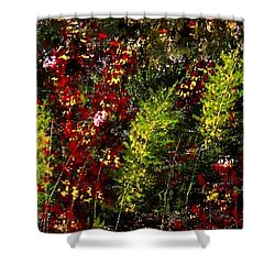 Ferns And Berries Shower Curtain