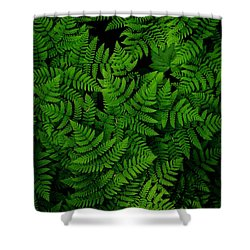 Ferns Galore Shower Curtain