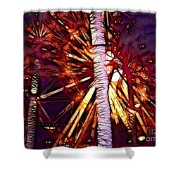 Shower Curtain featuring the photograph Ferris Wheel  by Mariola Bitner