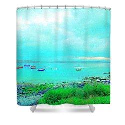 Ferry Wake Shower Curtain by Jan W Faul