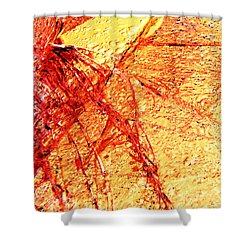 Festival Of Light Shower Curtain