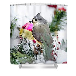 Festive Titmouse Bird Shower Curtain by Christina Rollo