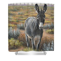 Festus Shower Curtain