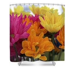 Ff-22 Shower Curtain