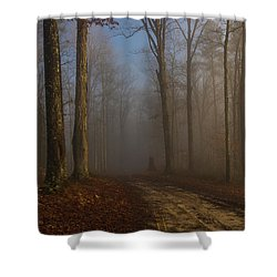 Foggy Morning In The Forest Shower Curtain