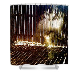 Backyardvisit Shower Curtain