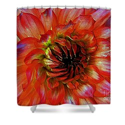 Shower Curtain featuring the photograph Fickle by Elfriede Fulda