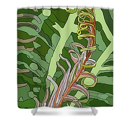 Fiddlehead Shower Curtain