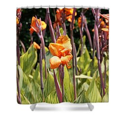 Field For Iris Shower Curtain