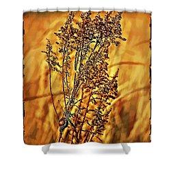 Field Frolic Shower Curtain by Steve Harrington