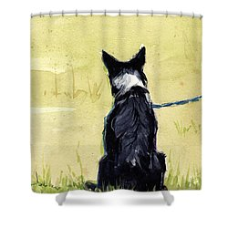 Shower Curtain featuring the painting Field Greens by Molly Poole
