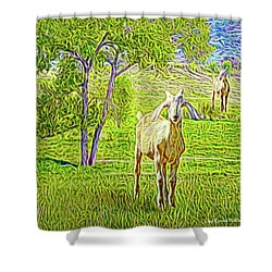 Field Of Baby Goat Dreams Shower Curtain by Joel Bruce Wallach