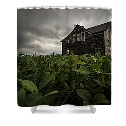 Field Of Beans/dreams Shower Curtain