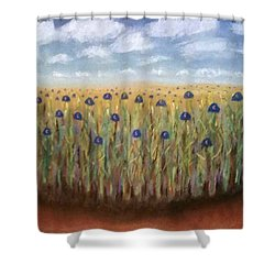 Field Of Dreams 2016 Shower Curtain