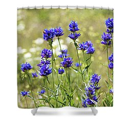 Shower Curtain featuring the photograph Field Of Dreams by Chad Dutson