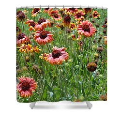 Field Of Flower Eyes Shower Curtain