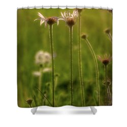 Field Of Flowers 3 Shower Curtain