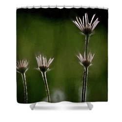 Field Of Flowers 4 Shower Curtain