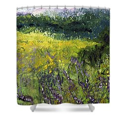 Field Of Flowers Shower Curtain by David Patterson