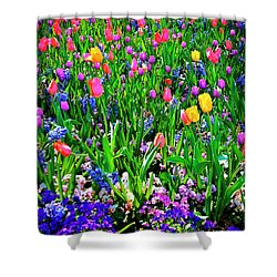 Field Of Flowers Shower Curtain by Tamyra Ayles