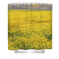 Shower Curtain featuring the photograph Field Of Goldfields by Marc Crumpler