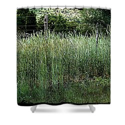 Field Of Grass Shower Curtain