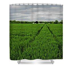 Field Of Green Shower Curtain