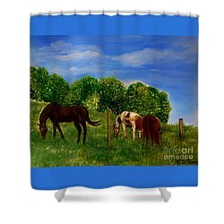 Field Of Horses' Dreams Shower Curtain