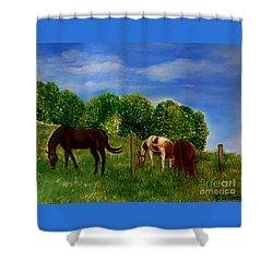 Field Of Horses' Dreams Shower Curtain