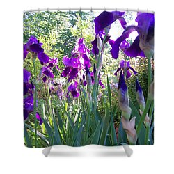 Shower Curtain featuring the digital art Field Of Irises by Barbara S Nickerson