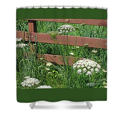 Field Of Lace Shower Curtain by Ann Horn