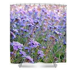 Field Of Lavendar Shower Curtain