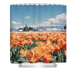 Field Of Orange Shower Curtain